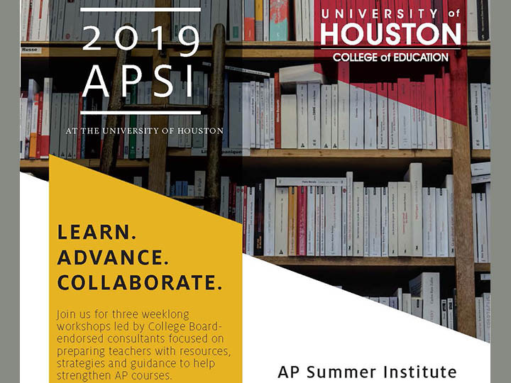 AP Summer Institute